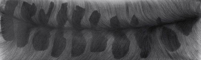 Serie noir: Flux II 2005, Bleistift a. P., 49 x 157