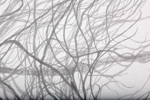 wintergarten-03.jpg