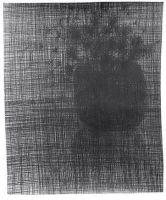 Serie noir: Flora II 2005, Bleistift a. P., 110 x 113