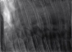 Serie noir: Flux VII 2006, Bleistift a. P., 128 x 150